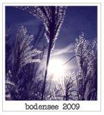 http://i402.photobucket.com/albums/pp103/Sushiina/TAGS/urlaubbodensee.jpg