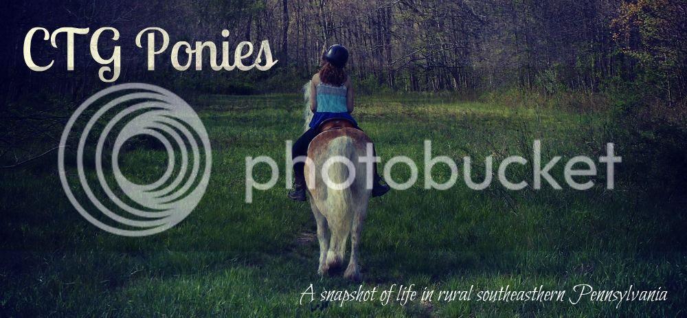 CTG Ponies