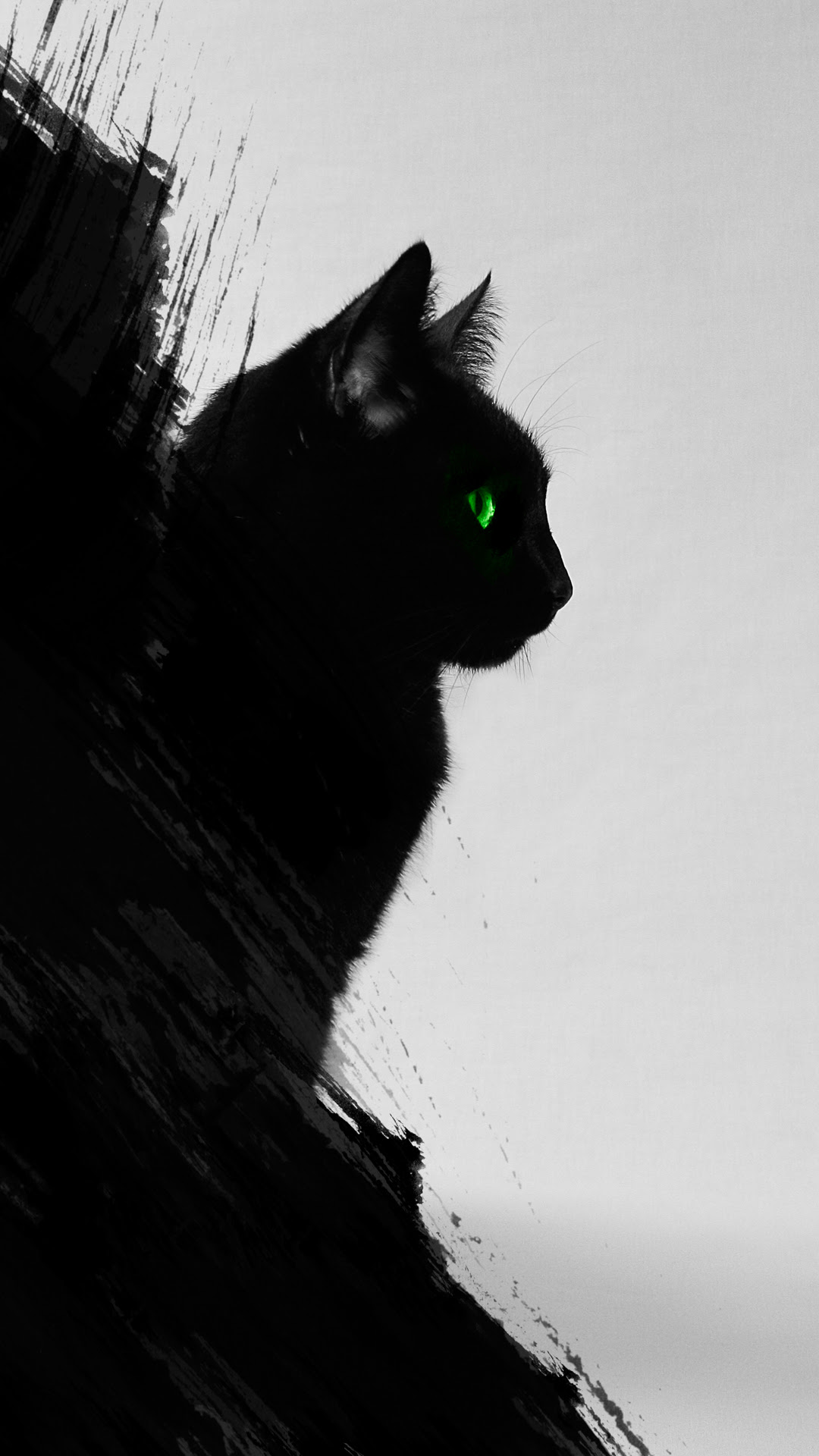 Black Cat iPhone Wallpaper HD