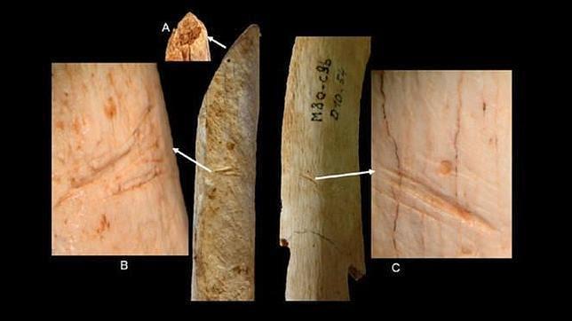 Los neandertales manipulaban los cadáveres al poco tiempo de morir