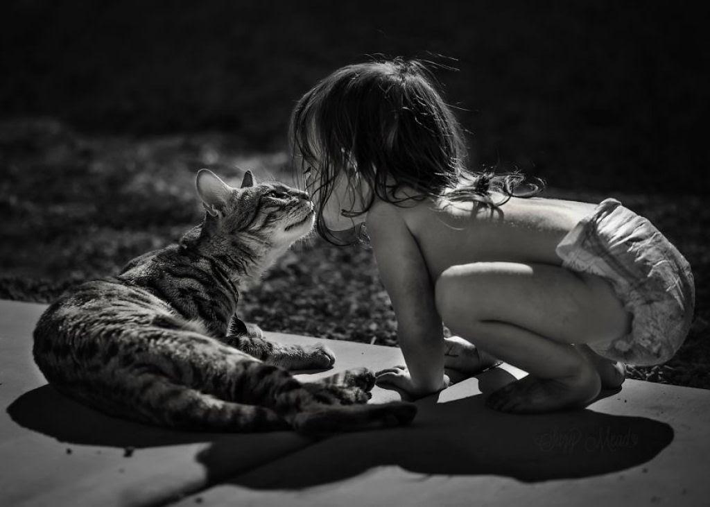 20 crianças brincando com seus gatos que alegrarão o seu dia 08