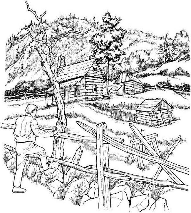 Colorear Para Adultos Dibujo Paisaje Forestal