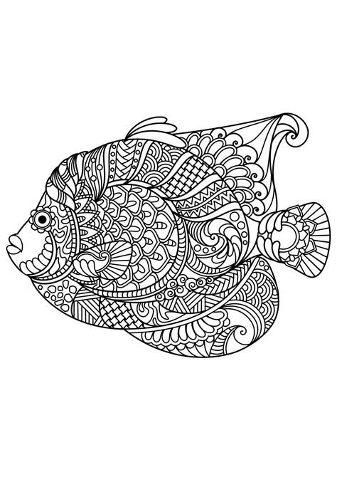 animal coloring pages  coloring seashells sea