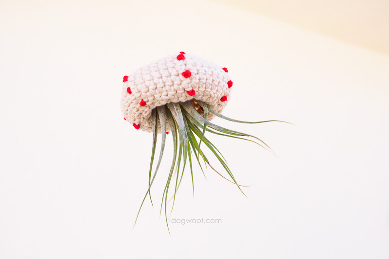 crochet air plant jellyfish | www.1dogwoof.com