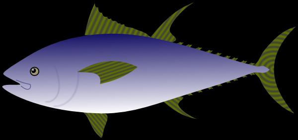 gambar ikan tongkol animasi gambar ikan hd gambar ikan tongkol animasi gambar