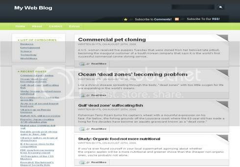 Green Dark Black Web2.0 Wordpress Theme