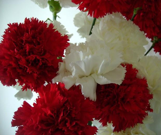 Fiesta Nacional de la Flor, Paisajismo, jardines