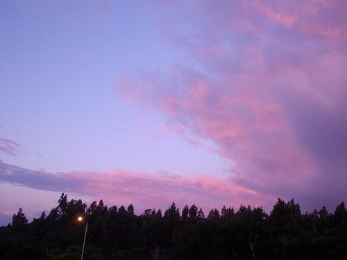 Pink & purple sky