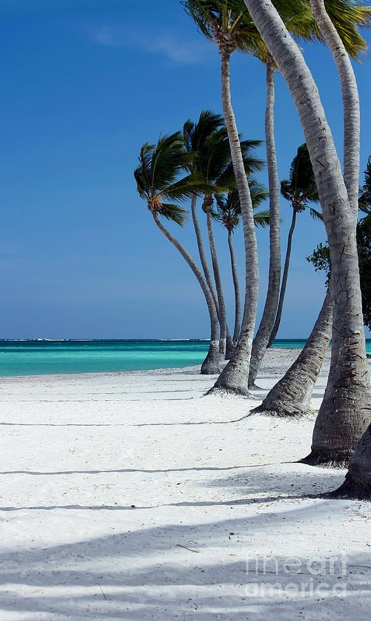 Punta Cana, Dominican Republic.