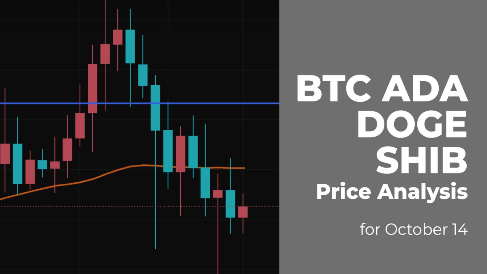 BTC, ADA, DOGE and SHIB Price Analysis for October 14