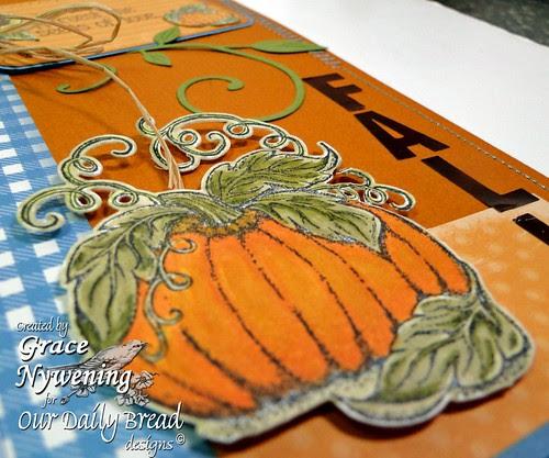 pumpkin-patch-pumpkin-detai