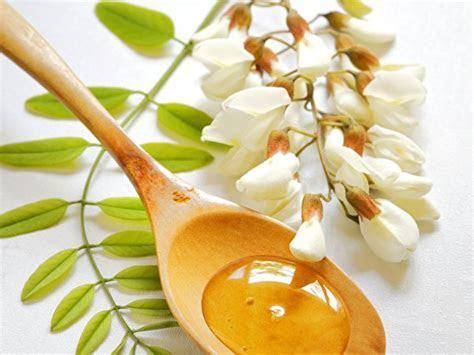Image acacia Honey Flowers Food Spoon Closeup