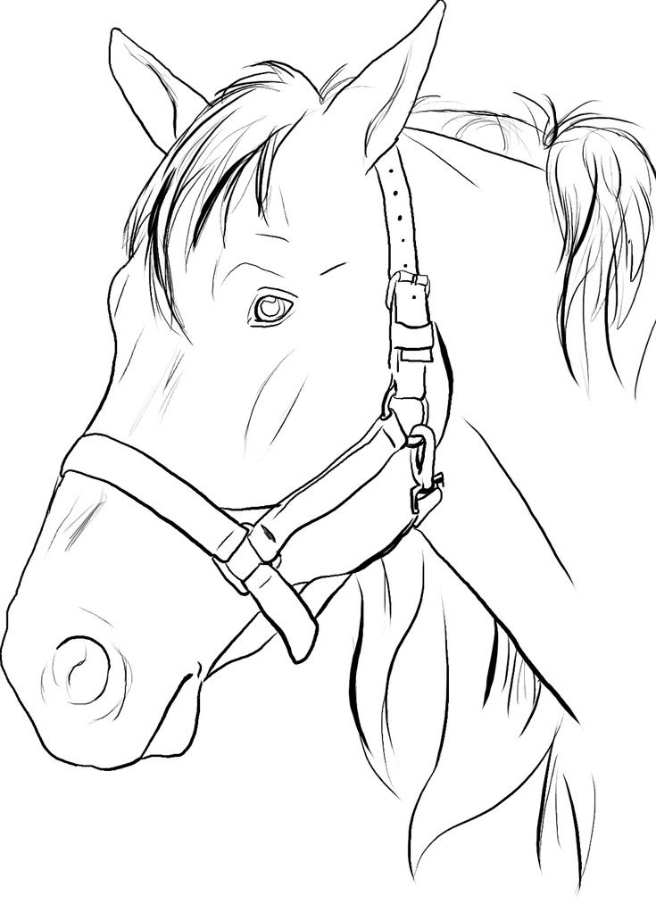Pancho Villa Coloring Pages At Getdrawingscom Free For Personal