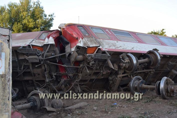 alexandriamou_treno_adentro2081