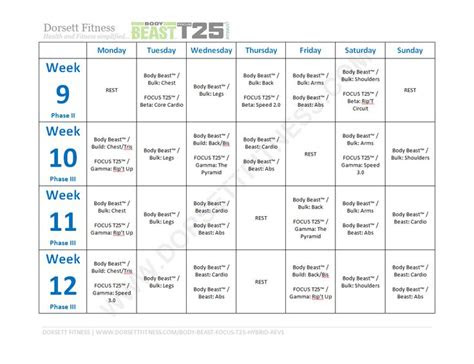 body beast focus  hybrid workout page  workout