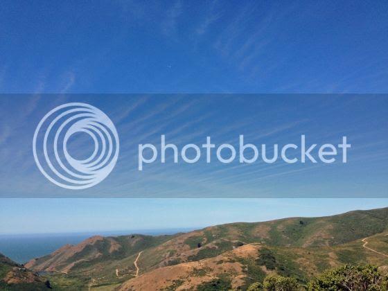 photo 7f7764b8-8a98-4f88-9fe5-d946970cf11a.jpg