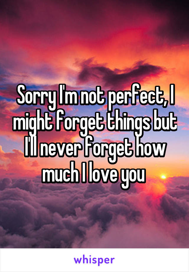 Sorry Im Not Perfect I Might Forget Things But Ill Never Forget