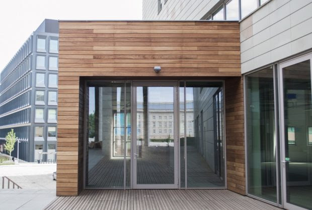 Why You Must Be Excited for Spotted Gum Timber Cladding for Sale?