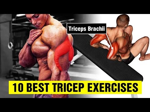 10 Best Tricep Exercises for Bigger Arms - Gym Body Motivation