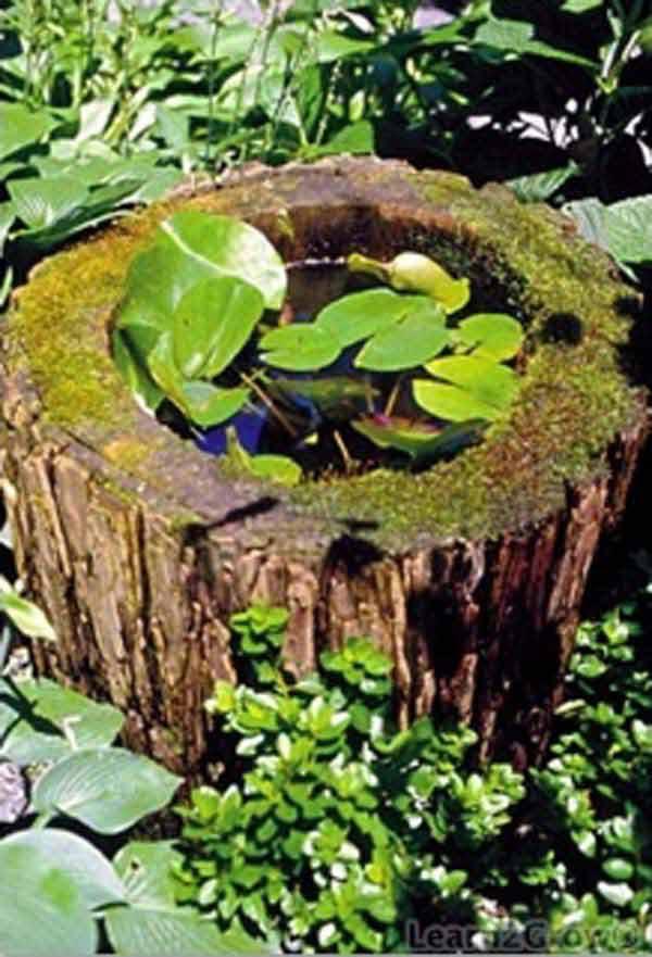 mini-pond-in-a-pot-woohome-8
