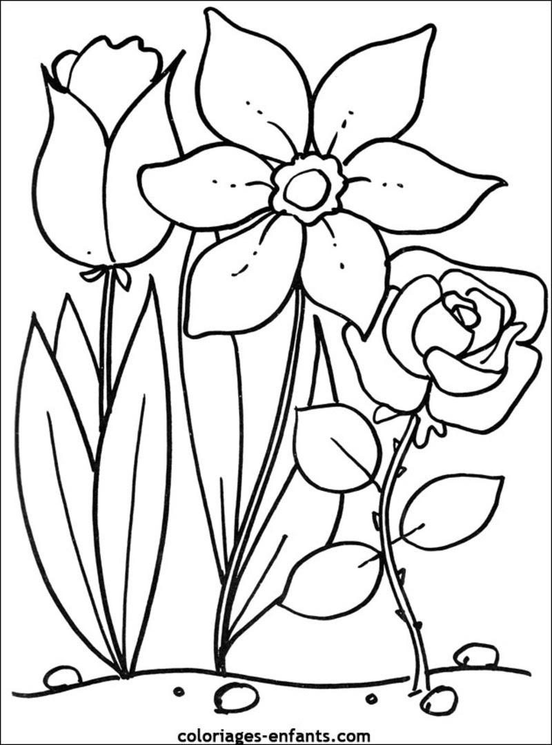 Coloriage  imprimer Nature Fleurs numéro