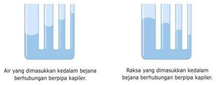 kapilaritas