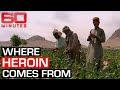 Inside Afghanistan's booming opium trade | 60 Minutes Australia - Featured Trending Popular Viral News