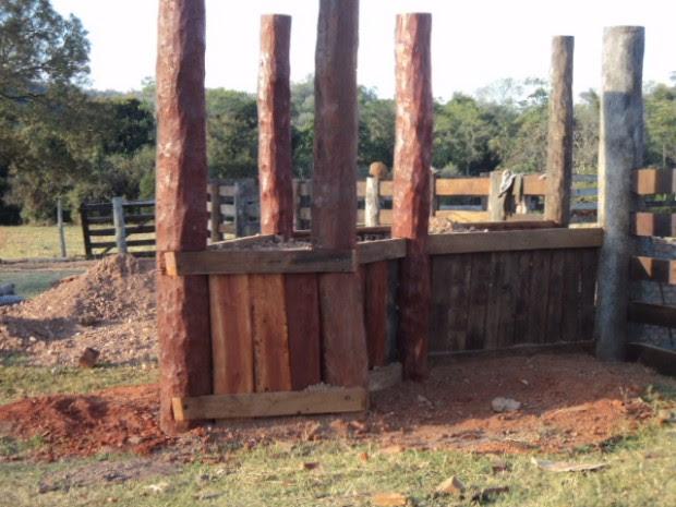Produtor rural é multado por exploração ilegal de madeira em MS (Foto: Divulgação/ PMA)
