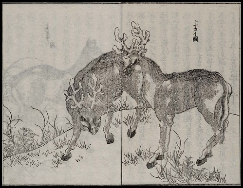 Mamiya Rinzo - Kita Ezo zusetsu vol. 1 (1855) duo