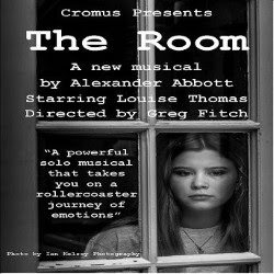 Image result for the room edfringe
