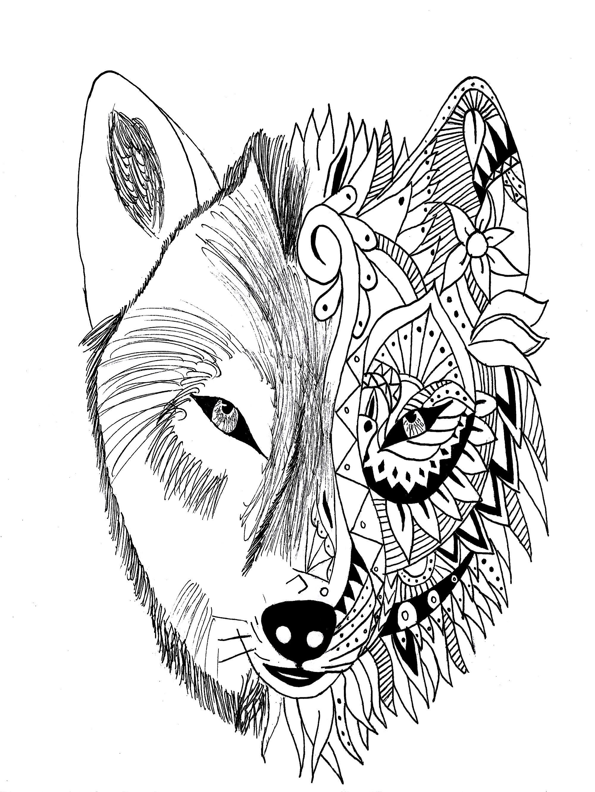 Werewolf Face Drawing at GetDrawings | Free download