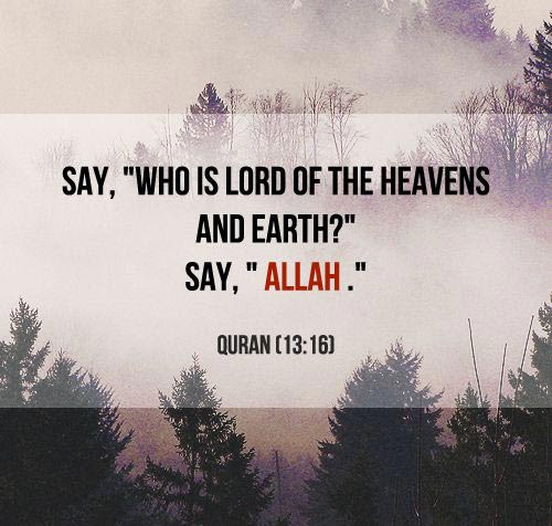 200+ Beautiful Quran Quotes, Verses  Surah [WITH PICTURES]