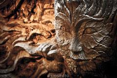 KIOMFOTO-6744