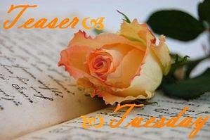 2669772-rose-d-licat-sur-un-vieux-livre-ouvert
