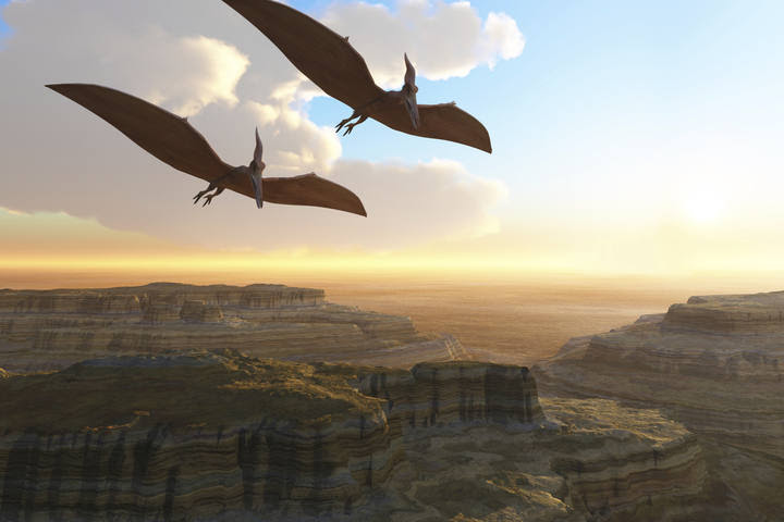Ilustración de pterosaurios sobrevolando un cañón prehistórico.