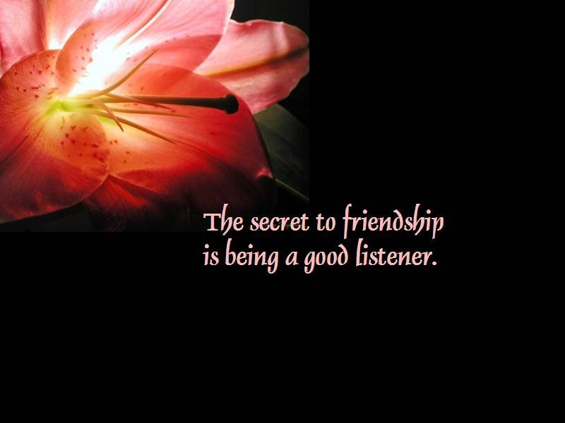 30 Heart Touching Friendship Quotes