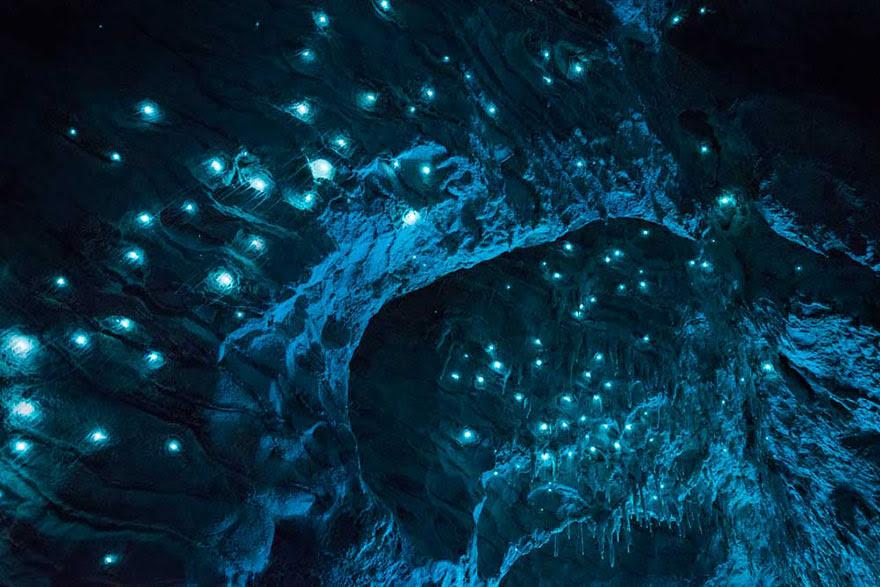 fotografia-cueva-gusanos-brillantes-nueva-zelanda-joseph-michael (9)