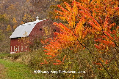 Red Barn and Orange Sumac, Richland County, Wisconsin