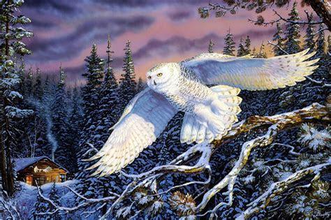 Wälder Eulen Gemälde Schnee Schnee Eule wallpaper
