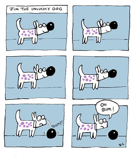 Jim the Unlucky Dog