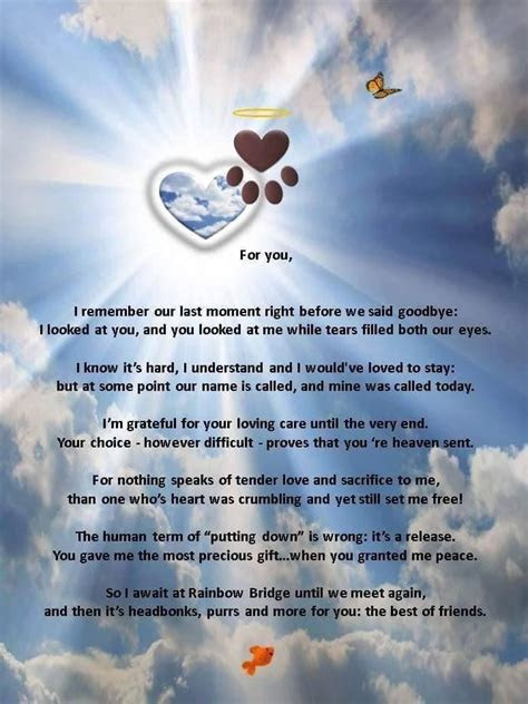 Comforting Quotes About Loss Of A Pet