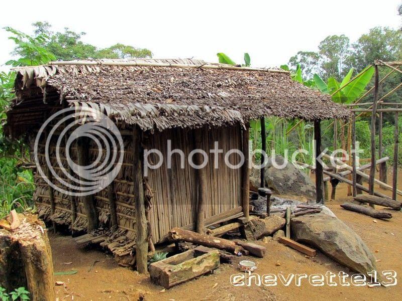 http://i1252.photobucket.com/albums/hh578/chevrette13/Madagascar/IMG_2205Copier_zpscdaf3def.jpg