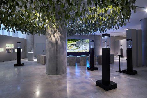 Άποψη της περιοδικής έκθεσης «Δωδώνη. Το μαντείο των ήχων». Μουσείο Ακρόπολης, φωτ. Γιώργος Βιτσαρόπουλος.
