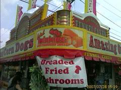 Deep fried twinkies at the fair