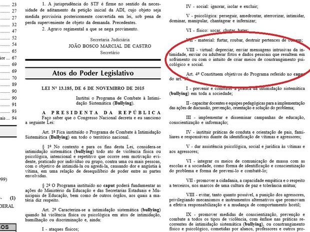 Lei sancionada em novembro define o bullying virtual (Foto: Reprodução/Diário Oficial)