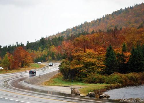 Route 302 in the rain