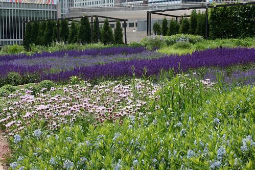 laurie garden