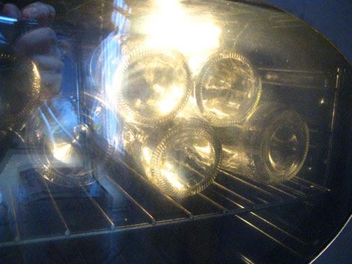 bottles in the owen-sterilization