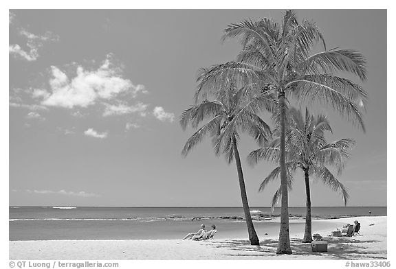 Black And White Picturephoto Couple On Beach Chair And Coconut