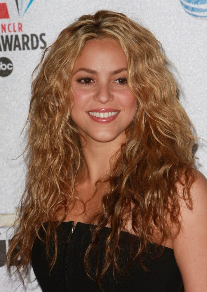 Shakira Loose Waves 2008 ALMA Awards - Press Room